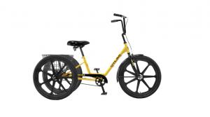 Bike Rentals in PCB