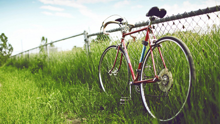 Destin Rental Bikes: Five Attractions You Won't Want to Miss