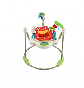 Bouncy Seat Rental in 30A and Destin, Florida