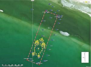 Turtle Reef aerial concept shot in Grayton Beach, Florida – South Walton Artificial Reef Association